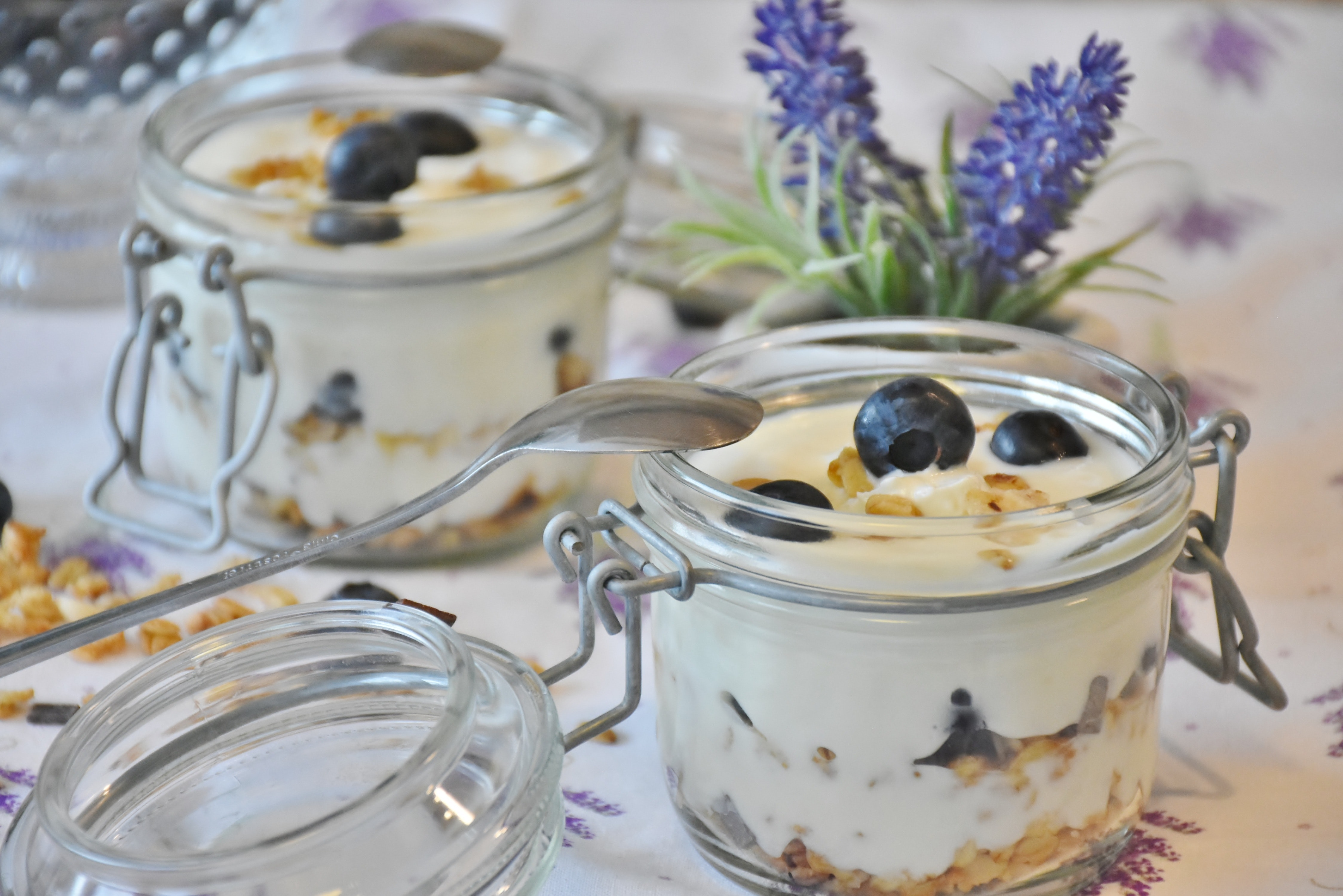 blueberries-overnight oats-breakfast-209460
